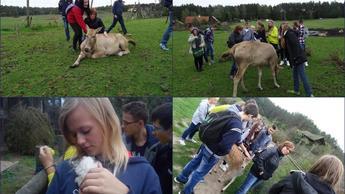 Park dzikich zwierząt w Kadzidłowie-wycieczka gimnazjalistów na Mazury