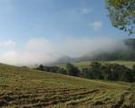 Poranne sierpniowe mgły.