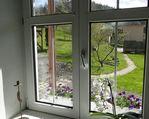 Widok z okna. Okno od strony wschodniej.