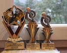 Nagrody w konkursie Karaoke