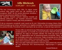 39. Alfie Hitchcock (14.09.2007 – 10.11.2008)