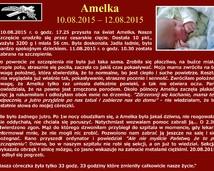 45. Amelka (10.08.2015 – 12.08.2015)