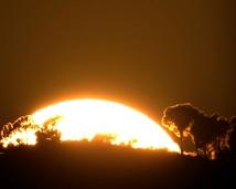 January 10, 2015 sunset observed from the University of the Balearic Island, Palma de Mallorca.