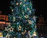 Poznańsk choinka - Boże Narodzenie