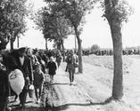 Wysiedlanie Polaków z Kraju Warty w 1939
