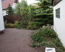 Ogród przed metamorfozą.