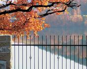 ogrodzenia cynkowanei malowane
