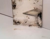 WZ5 / Odcień chłodny srebro z domieszka czerni