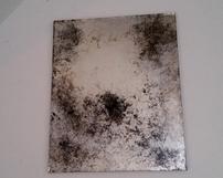 WZ3 / Odcień chłodny srebro z domieszka czerni
