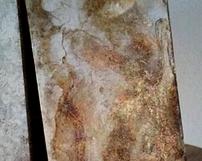 WZ34 / odcienie ciepłe złoto brazy