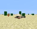 Maskowanie na pustyni