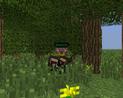 Maskowanie w lesie