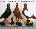 masciuch polski