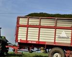 Transport do silosu