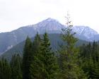Dolina Chochołowska Kwiecień