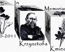 In Memoriam Krzysztofa Kmiecia/Op.176, 70x110