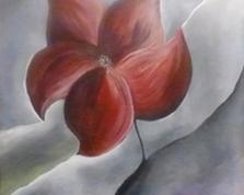 Fiore rosso, 70x50, 25.10.2013r.