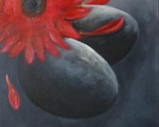 Gerbera i kamienie zen, 50x40,13.03.2014r.