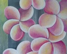 Plumeria,60x40,10.04.2015r.