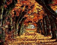 Exlibris Doroty Zasady/2012