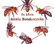 Op. 337.  Exlibris Józefa  Bondarczyka