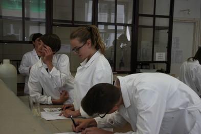 Zadania laboratoryjne.