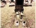 Cmentarz w Kozinie - jeden z najstarszych niemieckich nagrobków