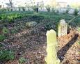 Teren nieistniejącego cmentarza w Sąpolnie