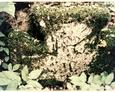 Ułamany krzyż leżący u podnóża pomnika