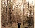Wędrówka po sasińskich lasach