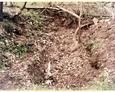 Tajemnicze pozostałości budynków koło Sasina