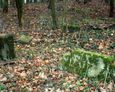 Zdewastowane nagrobki na ewangelickim cmentarzu w Niebędzinie