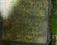 Tablica nagrobna rodziny Bork(częściowo wyczyszczona)