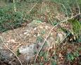 Pozostałości pomnika ku czci poległych w I wojnie światowej
