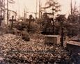Żeliwne krzyże na cmentarzu
