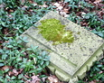 Fragment zniszczonego nagrobka