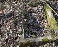 Kamienna rama - pozostałość nagrobka