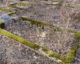 Kamienne ramy mogił wyznaczające pochówek
