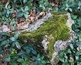 Przewrócona kamienne podstawa pod krzyż