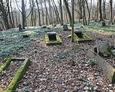 Widok na cmentarz od strony drogi