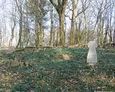 Ogólny widok na cmentarz w Bychowie