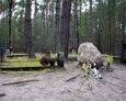 Widok na cmentarz od strony alei