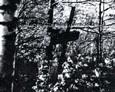 Kamienny krzyż na cmentarzu w Chrzanowie