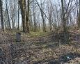 Wejście na cmentarz; widoczne pozostałości bramy