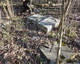 Zdewastowany teren cmentarza