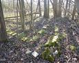 Pozostałości po ceglanej kaplicy cmentarnej