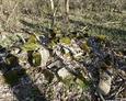 Tyle zopstało się z ewangelickiego cmentarza wiejskiego w Kozach  :(