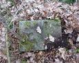 Gdzieniegdzie można natrafić na pozostałości nagrobków poza terenem cmentarza