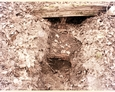 Pozostałości kaplicy w Runowie