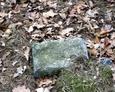 Nieliczne pozostałości po dawnym cmentarzu